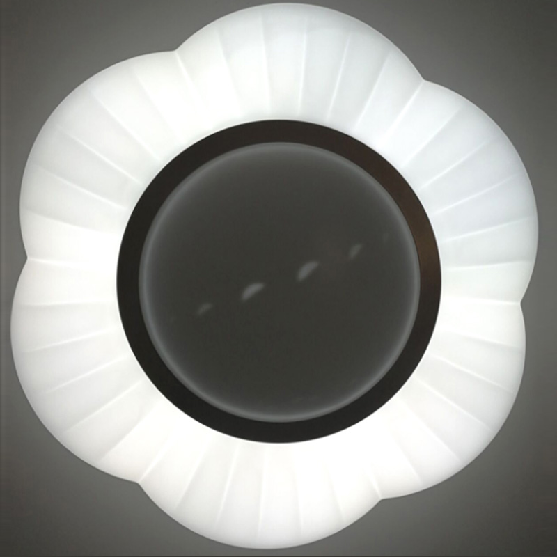 Led ceiling light CC-CLR066